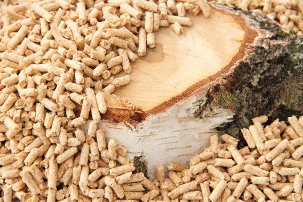 Pellets: Regenerative Energie für Ihre Heizung